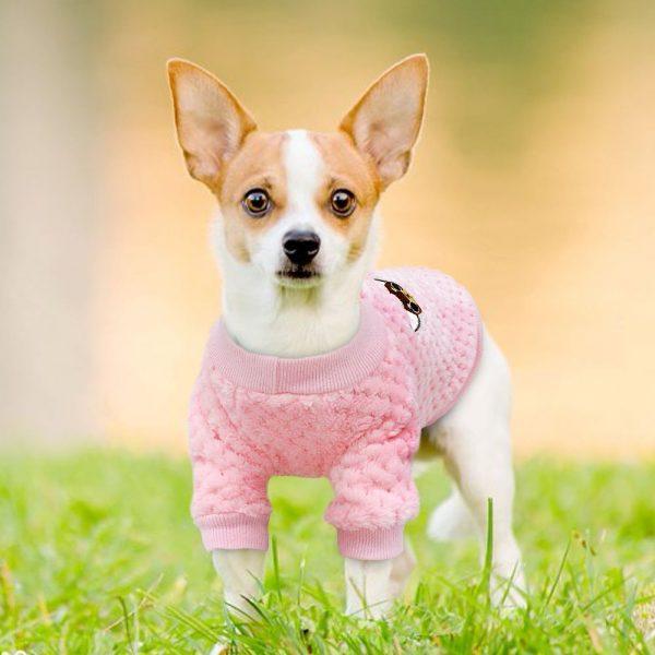 Jersey precioso de invierno para perro pequeño 7